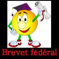 Brevet federal
