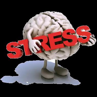 Stress bis